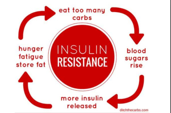 What Is All I'm Hearing Lately About Insulin Resistance?